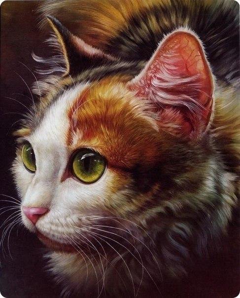 Dipinto cinese ad olio di gatto